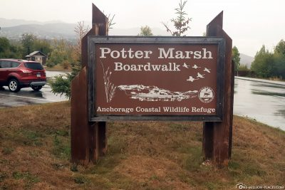 Der Potter Marsh Boardwalk