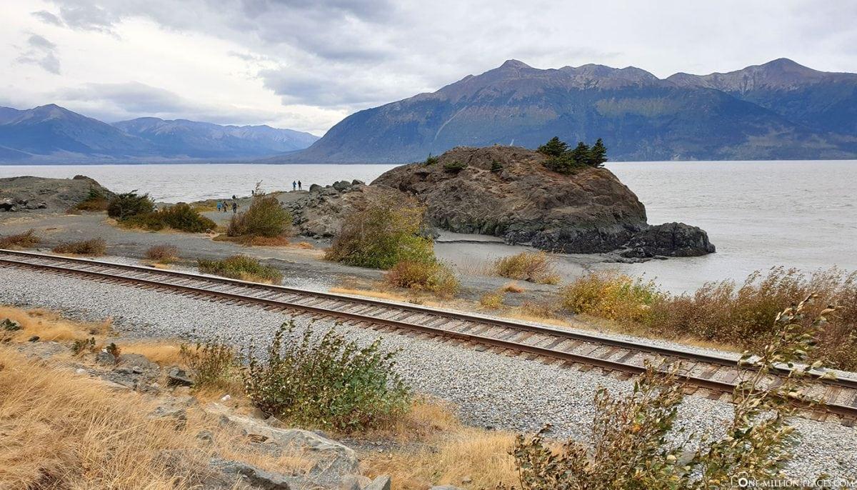 Anchorage Seward Highway Alaska Wildlife Center Usa