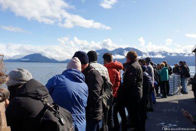 Walbeobachtung auf dem Boot