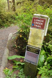 The Lunch Creek Trail
