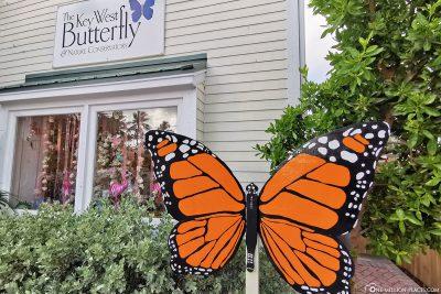The Butterfly Garden in Key West