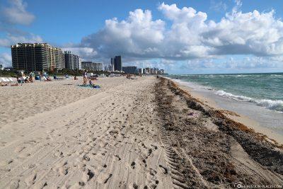 The beach in Miami Beach
