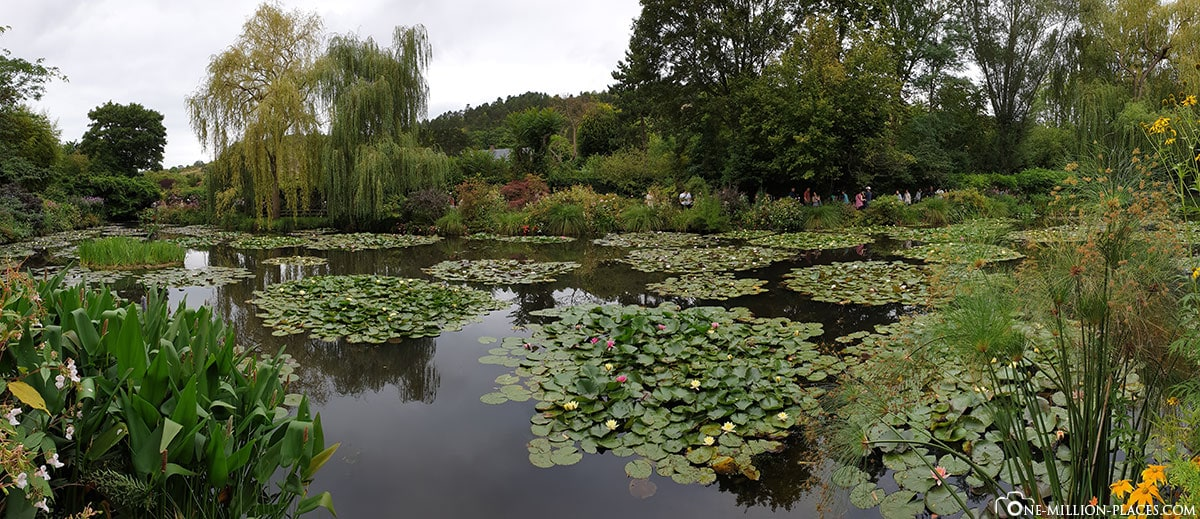 Monet, Water Lily Pond, Panorama, Giverny, France