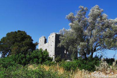 Ruins of a Byzantine basilica