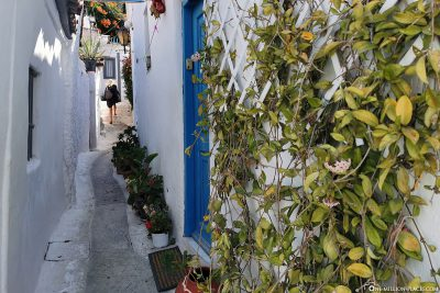 The narrow streets of the Plaka district