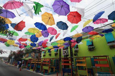 Bunte Regenschirme über der West Hill Street