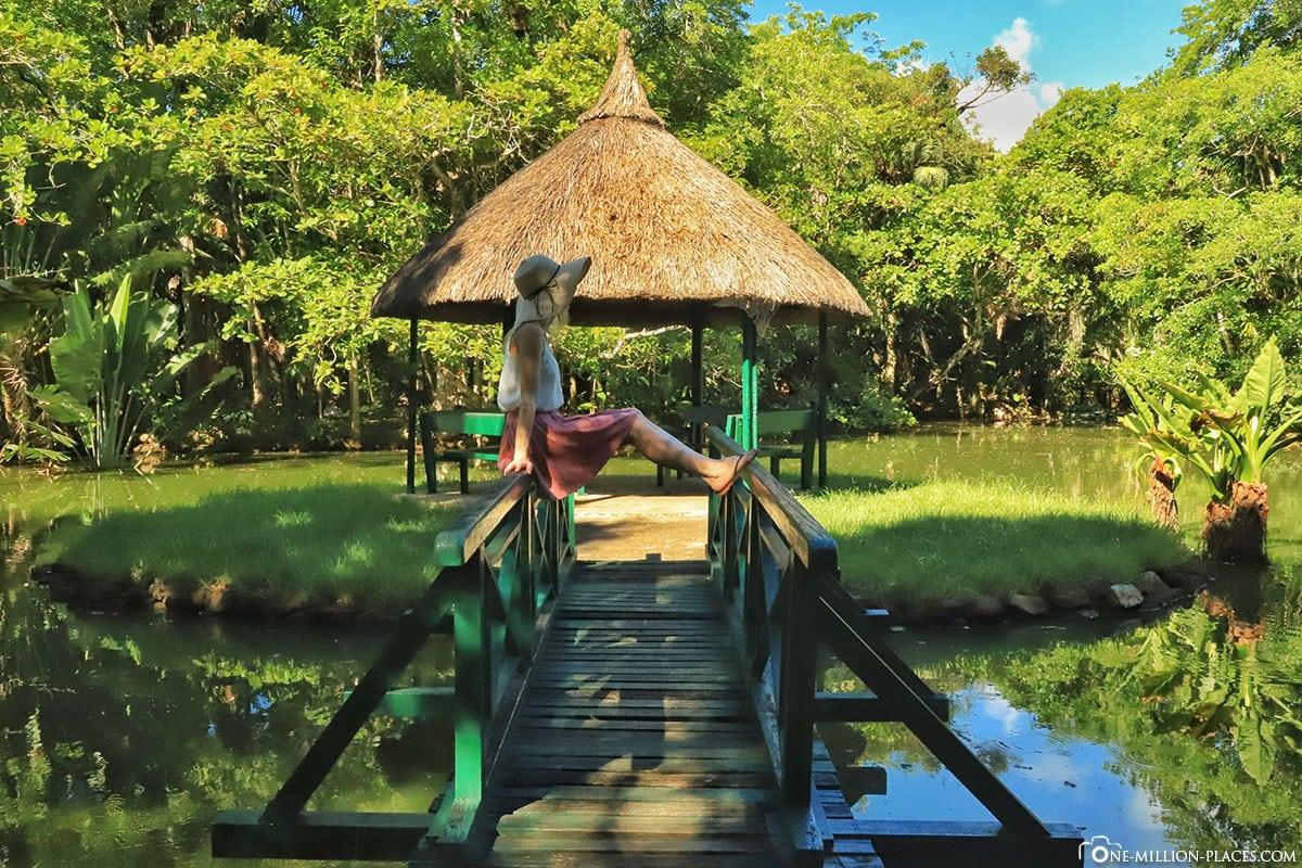 Grand Bassin, Pavilion, Mauritius, Botanical Garden