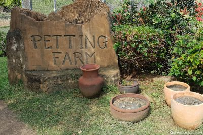 The petting zoo in Casela Park