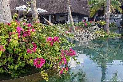 Hammocks in the main pool