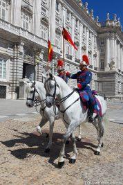 Die Königliche Garde