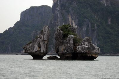 Rock Formation Fighting Cocks