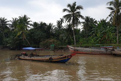 Ride on the Ben Tre River
