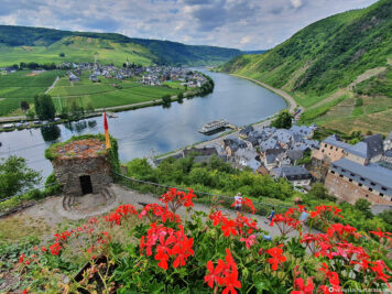 View of the Moselle from Metternich Castle