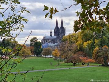 Blick vom Rheinpark auf den Dom
