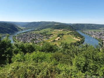 The Kröver Moselle Loop