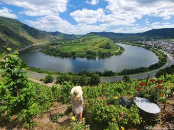 The beautiful Moselle loop near Bremm