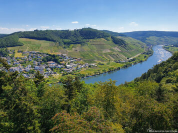 View of the Moselle near Pünderich