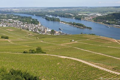 View of Rüdesheim