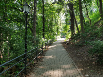 The way to the castle