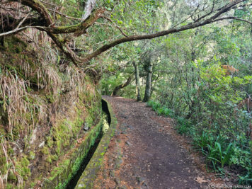 Walk along the Levada