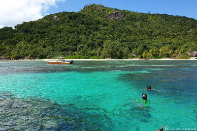 Snorkeling in front of Praslin