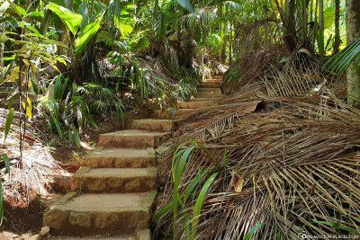 Die 600 Treppenstufen