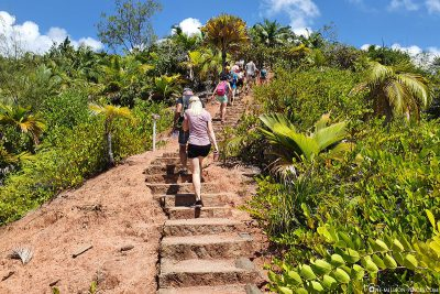 The way to the lookout point