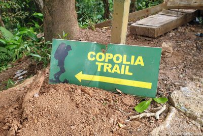 The Copolia Trail