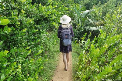 The hike to Anse Major