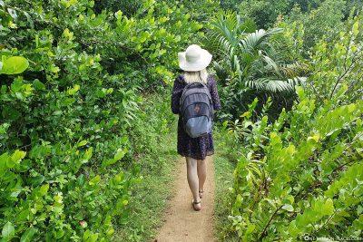 Die Wanderung zum Anse Major