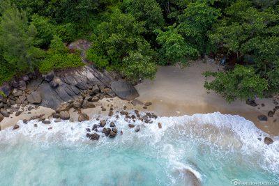 Der Anse Major auf der Insel Mahé