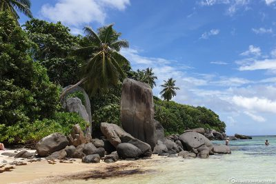 The granite rocks at Anse Royale