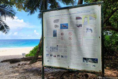 Infotafel über die Schildkröten am Strand