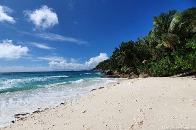 Der Petite Anse auf der Insel Mahé