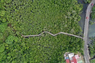 Drohnenaufnahme des Port Launay Mangrove Forest