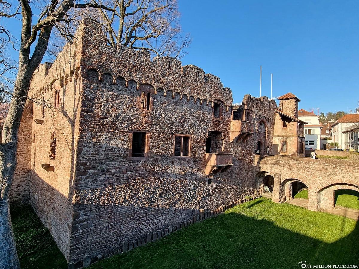Tiefburg, Heidelberg, Handschuhsheim, Sights