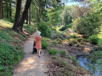 Spaziergang durch den Rhododendronpark