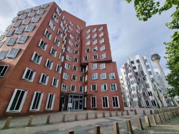 Die Gehry-Bauten