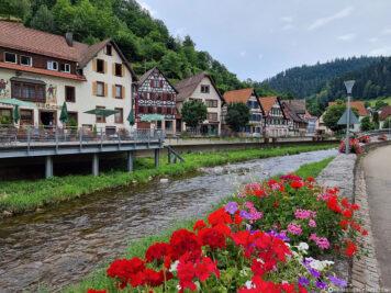Der Fluss Schiltach