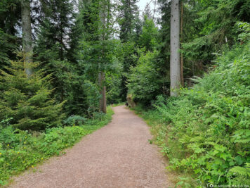 Hiking trail to the waterfalls