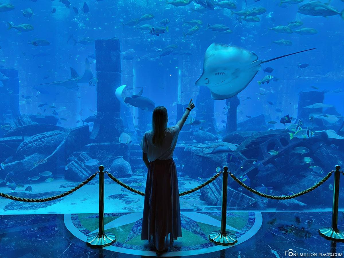 Lost Chambers Aquarium, Ambassador Lagoon, Großes Aquarium, Atlantis Hotel, Dubai, Reisebericht