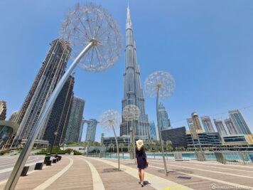 Pusteblumen im Burj Park