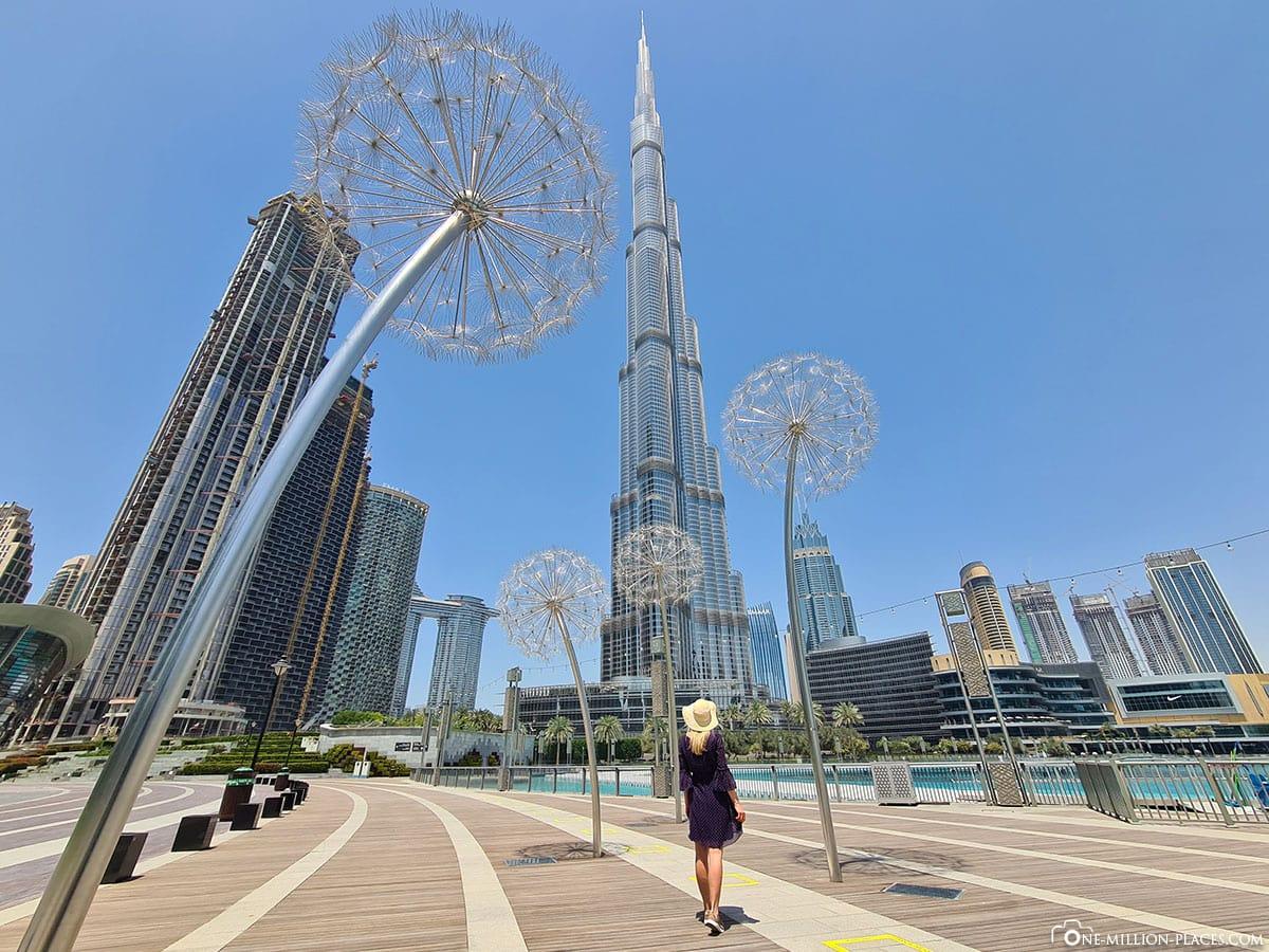 Pusteblumen im Burj Park, Fotospot, Instagram, Dubai