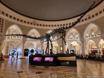 Das Dinosaurier Skelett