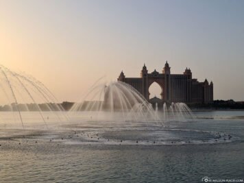 The Palm Water Fountain