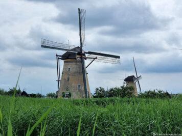 Mills in Kinderdijk