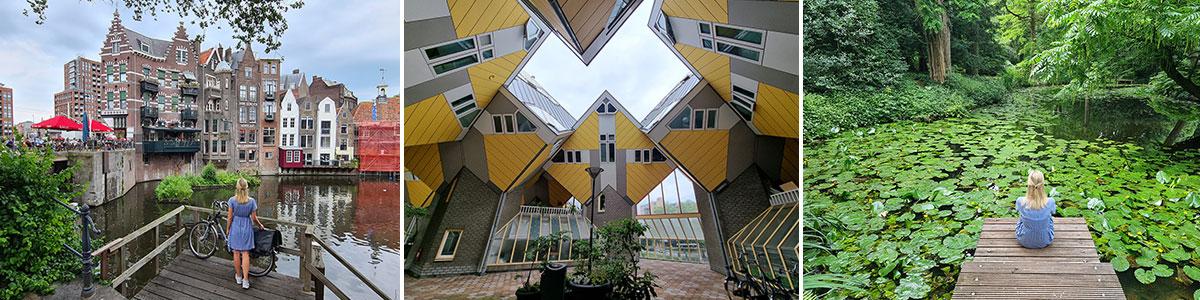 Rotterdam header image