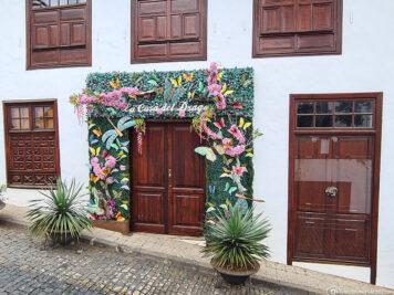 Casa del Drago