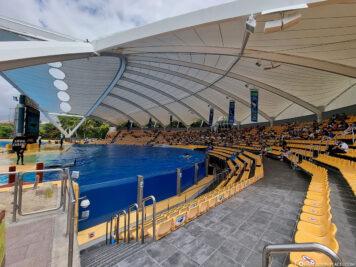 Die Orca Show im Loro Park