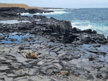 The coast in Los Silos